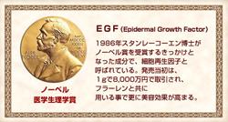 ナノシルク EGF ノーベル賞成分
