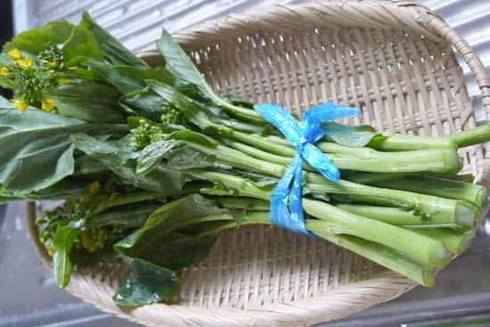 アスパラ菜 葉酸 ビタミンA