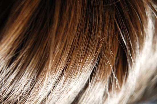 髪サラツヤ ハリコシ