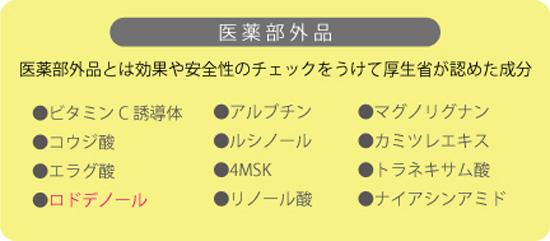 美白成分 医薬部外品種類 2013