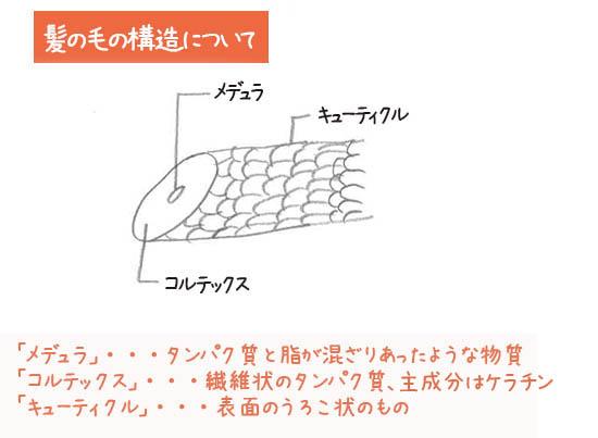 NHKガッテン 髪 ダメージヘア原因 解消方法 ツヤツヤサラサラ
